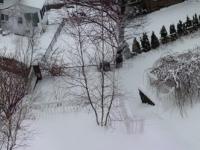 More F'ing Snow