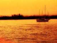 Sunset, Pt. V